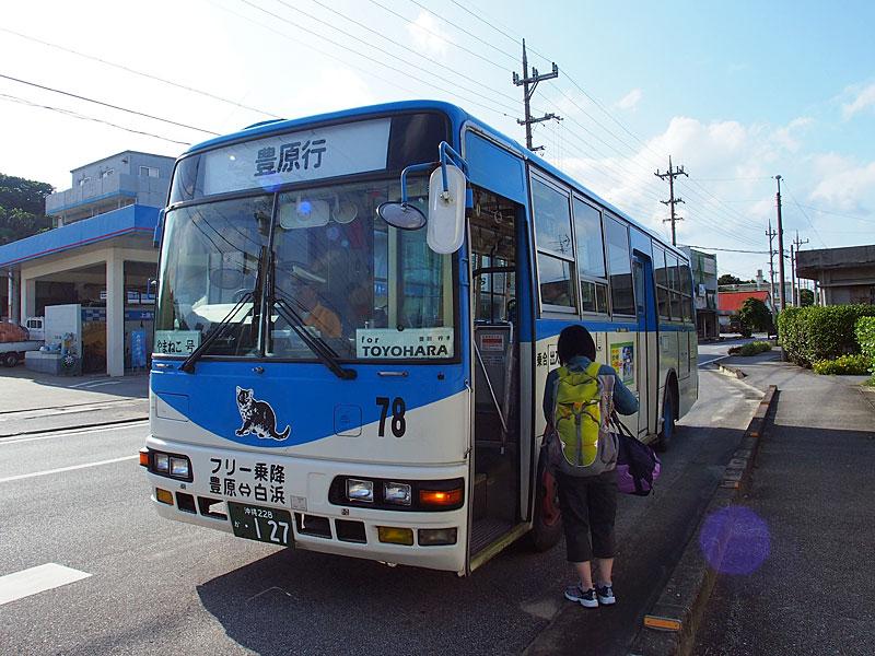 西表島交通のバス