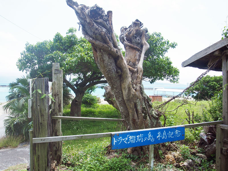 川島美容院