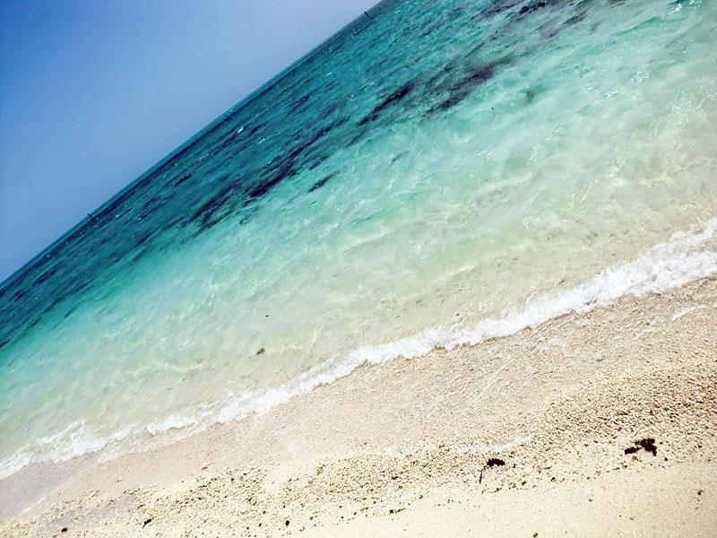 水はとてもキレイだけど残念ながら遊泳禁止